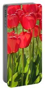 Red Tulips Square Portable Battery Charger