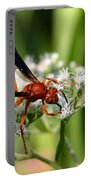 Red Wasp On Lace Portable Battery Charger