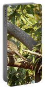 Red Wattlebird Australia Portable Battery Charger