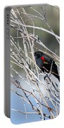 Red Winged Black Bird At Chatfield Portable Battery Charger