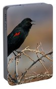 Red Winged Blackbird Call Portable Battery Charger