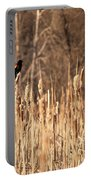 Red Winged Blackbird On Cattails Portable Battery Charger