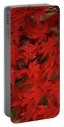 Red With Envy Portable Battery Charger