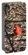 Redbird And American Golden Finch Portable Battery Charger