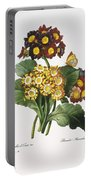 Redoute: Auricula, 1833 Portable Battery Charger