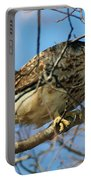 Redtail Among Branches Portable Battery Charger