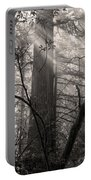 Redwood Mystery Portable Battery Charger