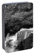 Redwood Rushing Stream 2  Portable Battery Charger