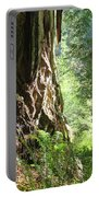 Redwood Tree Art Prints Redwoods Forest Portable Battery Charger