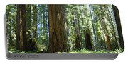 Redwood Trees Forest California Redwoods Baslee Portable Battery Charger