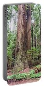 Redwood4 Portable Battery Charger