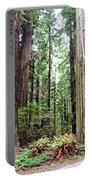 Redwood5 Portable Battery Charger