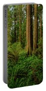 Redwoods And Ferns Portable Battery Charger