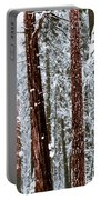 Redwoods In Snow Portable Battery Charger