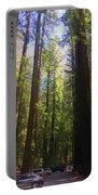 Redwoods Portable Battery Charger