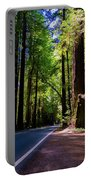 Redwoods Road Portable Battery Charger