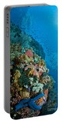 Reef Scene With Corals And Fish Portable Battery Charger by Mathieu Meur