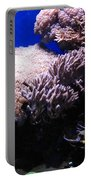 Reef Tank Portable Battery Charger