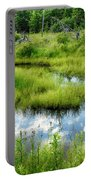 Reflected Clouds In Grass Portable Battery Charger