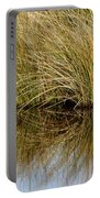 Reflecting Reeds Portable Battery Charger