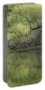 Reflecting Spring Green Portable Battery Charger