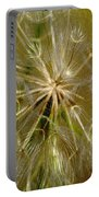 Reflecting The Golden Sunshine Of Love Portable Battery Charger