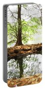 Reflecting Tree Trunks Portable Battery Charger