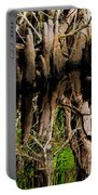 Reflection Of Cypress Knees Portable Battery Charger