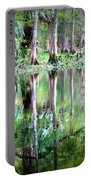 Reflection Of Cypress Trees Portable Battery Charger