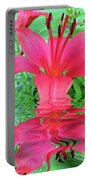 Reflection Of Life  Portable Battery Charger