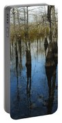 Reflections At Big Cypress Portable Battery Charger