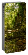 Reflections In Rio Pelago Portable Battery Charger