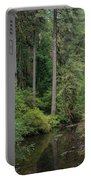 Reflections In Silver Falls State Park Portable Battery Charger