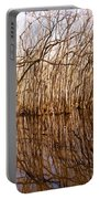 Reflections In The Swamp Portable Battery Charger