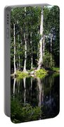 Reflections On The Ocklawaha River  Portable Battery Charger