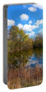Reflective Cloudy Palatine, Il,  Library Pond Portable Battery Charger