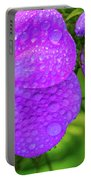 Refreshed Phlox 2 Portable Battery Charger