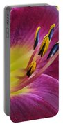 Regal Beauty Portable Battery Charger