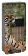 Regal Tiger Portable Battery Charger