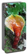 Reishi Sprout Portable Battery Charger