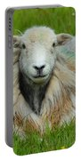 Relaxing In The Pasture Portable Battery Charger