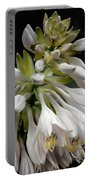 Renaissance Lily Portable Battery Charger