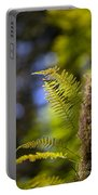 Renewal Ferns Portable Battery Charger