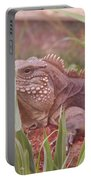 Reptile Land  Portable Battery Charger