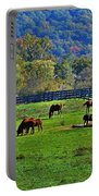Rescue Horses Portable Battery Charger