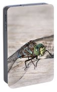 Rescued Dragonfly Portable Battery Charger