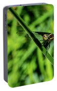 Resting Alert Dragonfly Portable Battery Charger