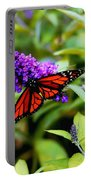 Resting Butterfly 2 Portable Battery Charger