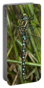 Resting Darner Portable Battery Charger
