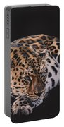 Resting Leopard  Portable Battery Charger